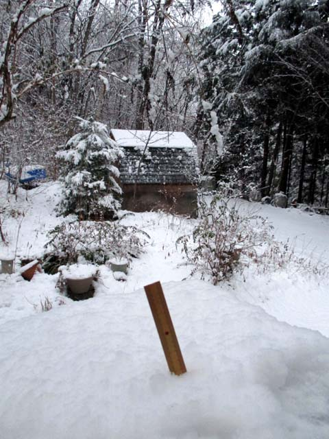 雪の降る日は・・・_d0127634_937886.jpg