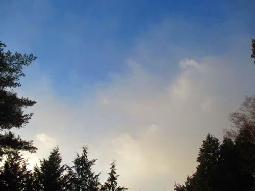 雪の降る日は・・・_d0127634_938258.jpg