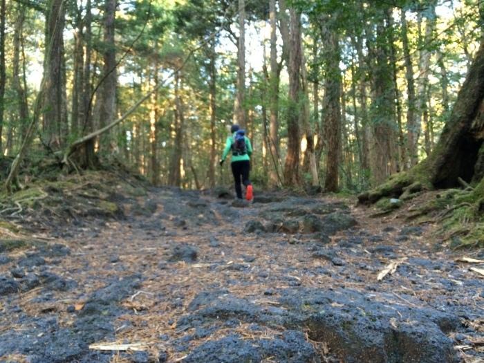 2014.12.27-29 富士山一周トレイル day2 河口湖・鳴沢-朝霧_b0219778_16215142.jpg