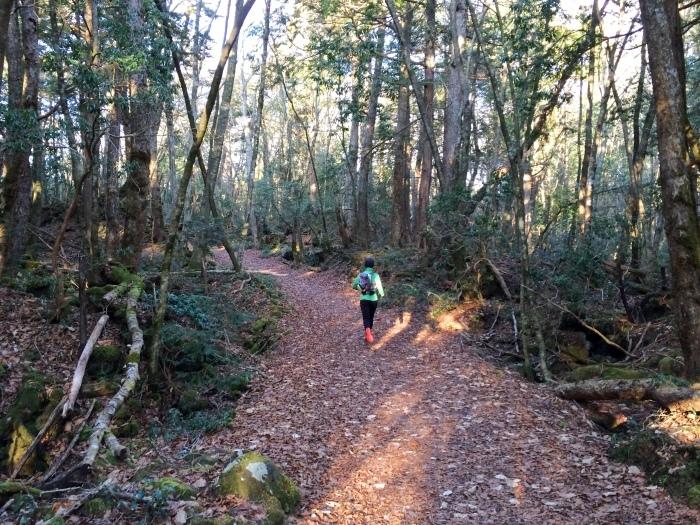 2014.12.27-29 富士山一周トレイル day2 河口湖・鳴沢-朝霧_b0219778_16222194.jpg