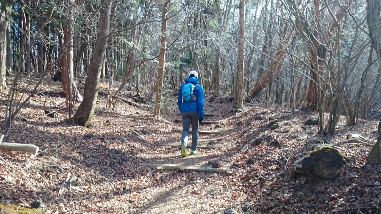 2014.12.27-29 富士山一周トレイル day2 河口湖・鳴沢-朝霧_b0219778_16322619.jpg