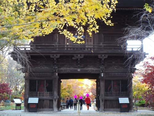宮本三郎記念館と九品仏まで見たこと_f0211178_14223036.jpg