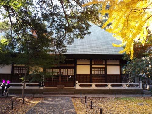 宮本三郎記念館と九品仏まで見たこと_f0211178_14225140.jpg