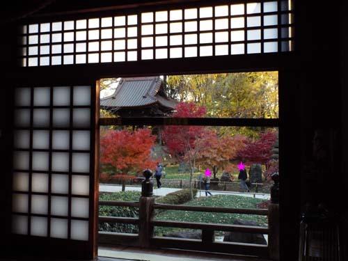 宮本三郎記念館と九品仏まで見たこと_f0211178_14231760.jpg