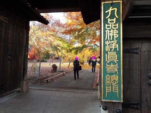 宮本三郎記念館と九品仏まで見たこと_f0211178_14232446.jpg