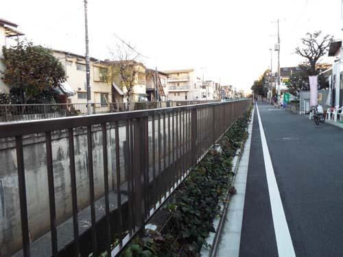 宮本三郎記念館と九品仏まで見たこと_f0211178_14233268.jpg