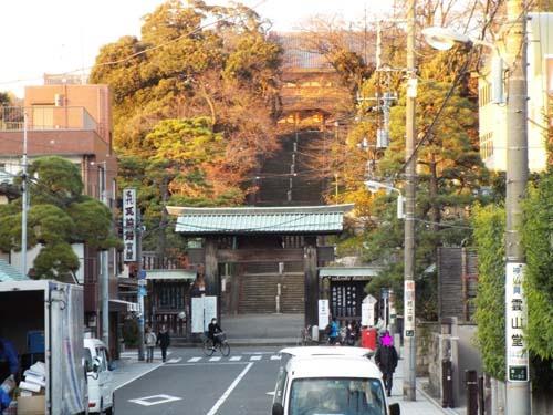 宮本三郎記念館と九品仏まで見たこと_f0211178_14233879.jpg