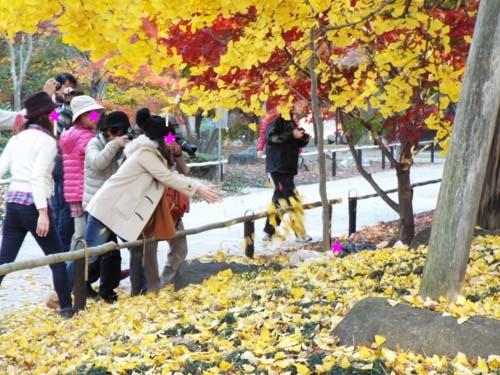 宮本三郎記念館と九品仏まで見たこと_f0211178_1423510.jpg