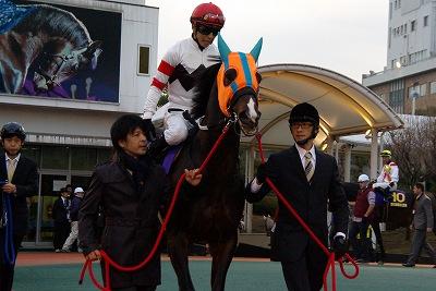東京大賞典は、ホッコータルマエが人気に応え圧勝、堂々2連覇達成_b0015386_23592258.jpg