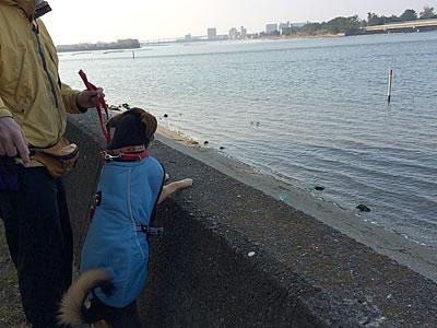 浜名湖へ_d0207298_12101483.jpg
