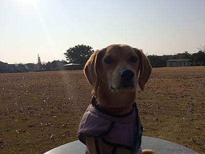 浜名湖へ_d0207298_12133757.jpg
