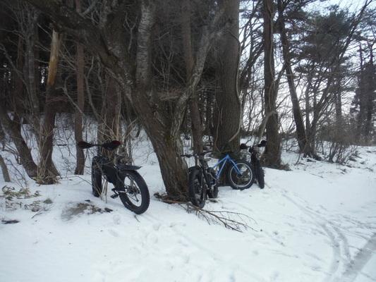ファットバイクで雪遊び 2014年12月_c0132901_9203435.jpg