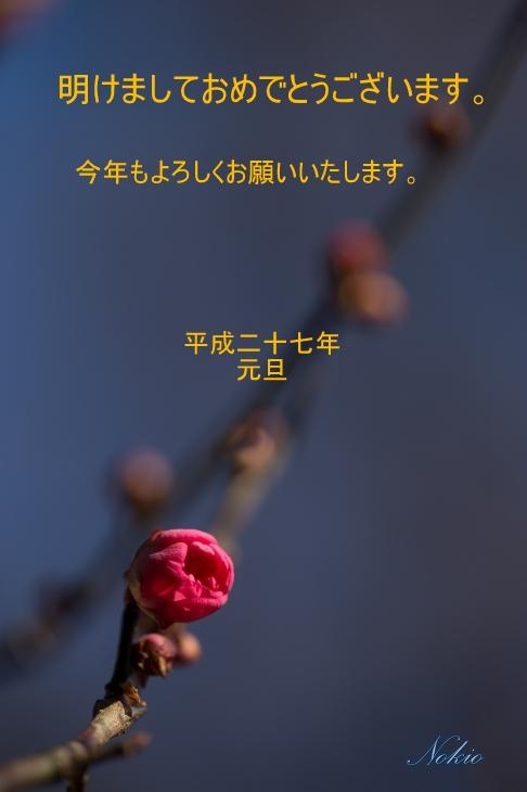 f0173817_222151.jpg