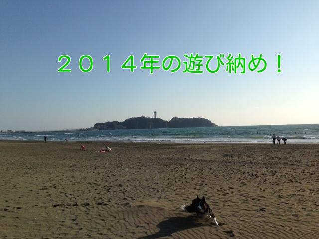 a0232619_1640363.jpg