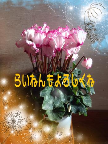 f0032434_15263942.jpg