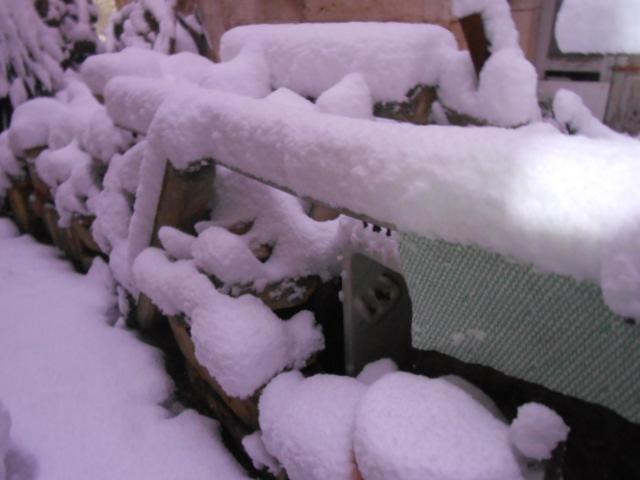 雪・雪・雪_b0305039_16135040.jpg