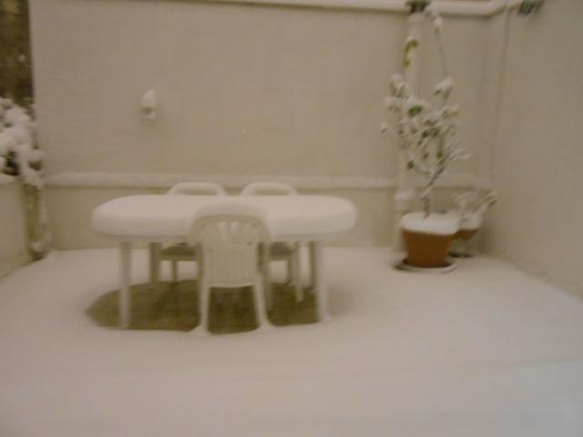 雪・雪・雪_b0305039_1663166.jpg