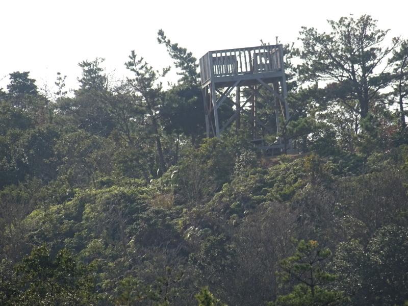 孝子の森へ孫たちと行ってきました_c0108460_19505965.jpg