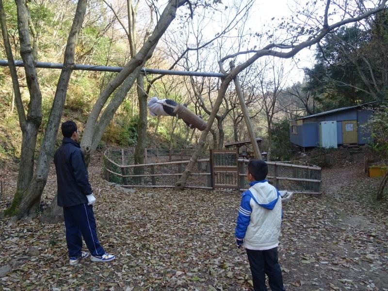 孝子の森へ孫たちと行ってきました_c0108460_19570742.jpg