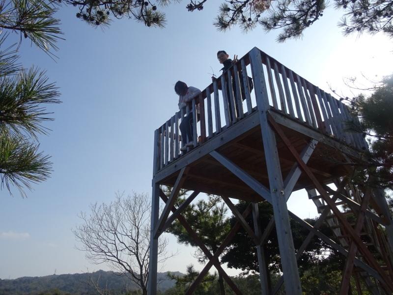孝子の森へ孫たちと行ってきました_c0108460_19571089.jpg
