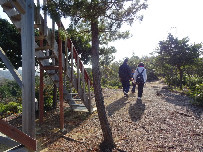 孝子の森へ孫たちと行ってきました_c0108460_19571110.jpg