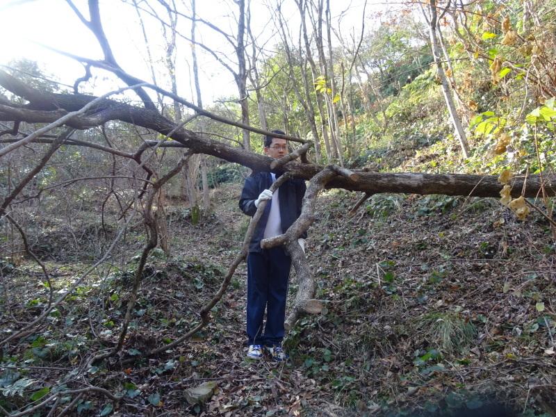 孝子の森へ孫たちと行ってきました_c0108460_19571444.jpg