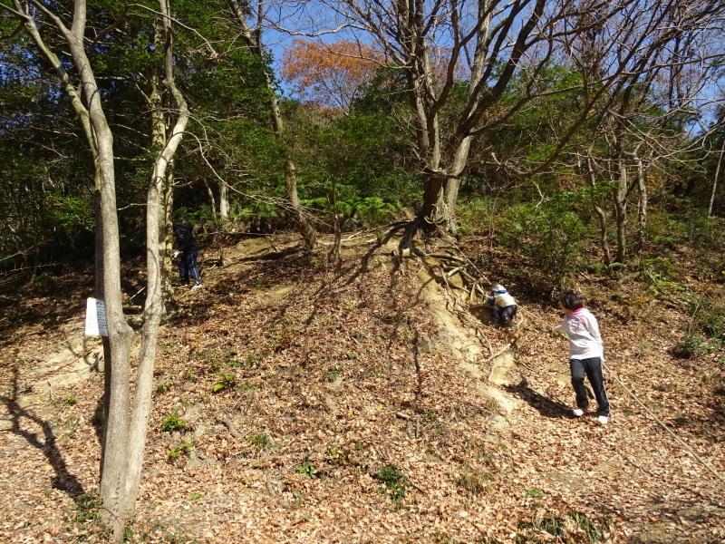 孝子の森へ孫たちと行ってきました_c0108460_19572033.jpg