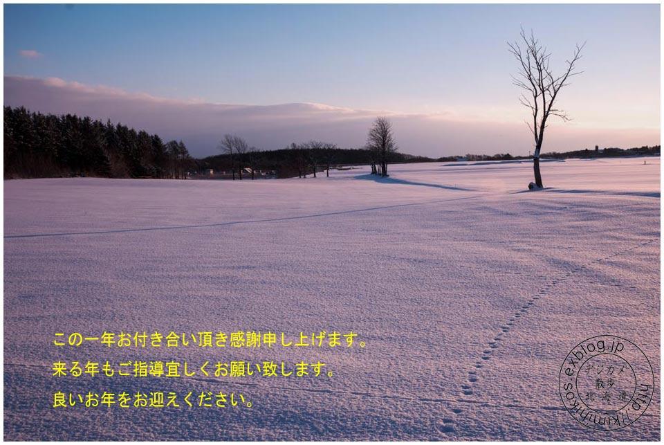 e0046471_1342159.jpg