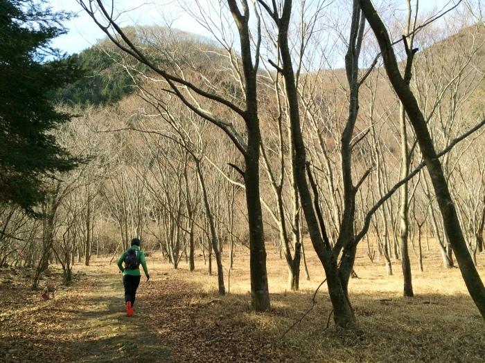 2014.12.27-29 富士山一周トレイル day2 河口湖・鳴沢-朝霧_b0219778_20511365.jpg