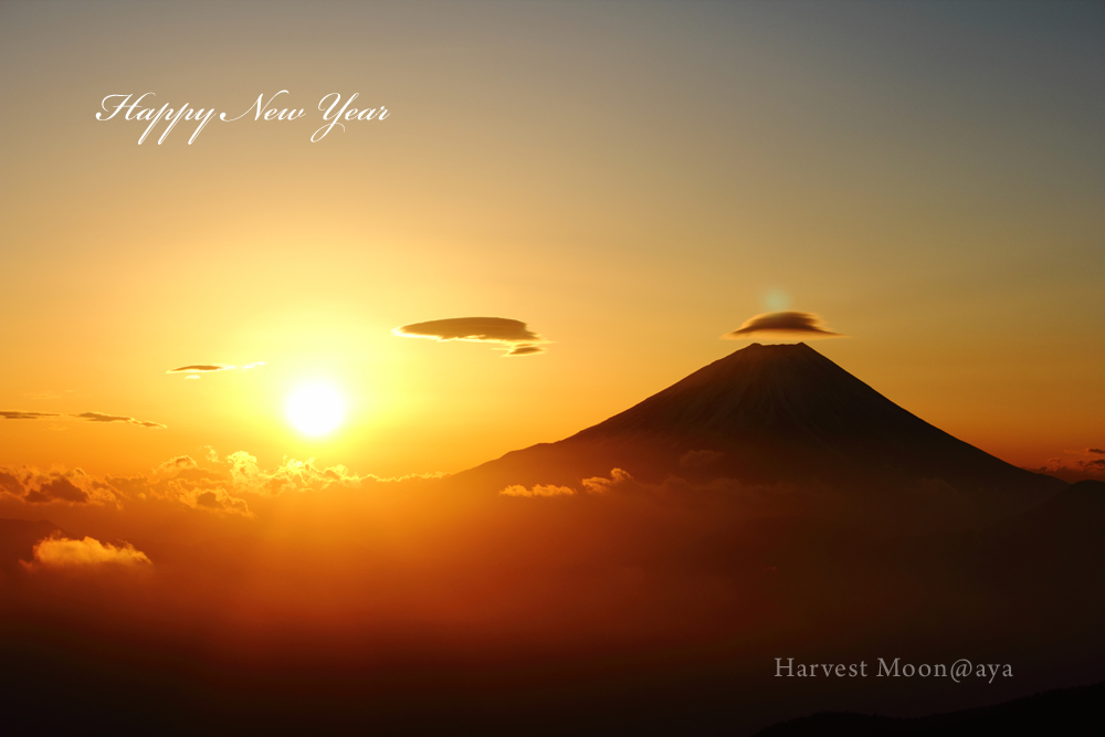 Happy New Year!_b0208495_2359284.jpg