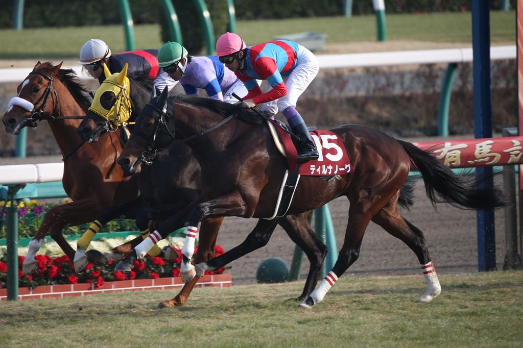 2014年12月28日 有馬記念(GⅠ)_f0204898_810370.jpg