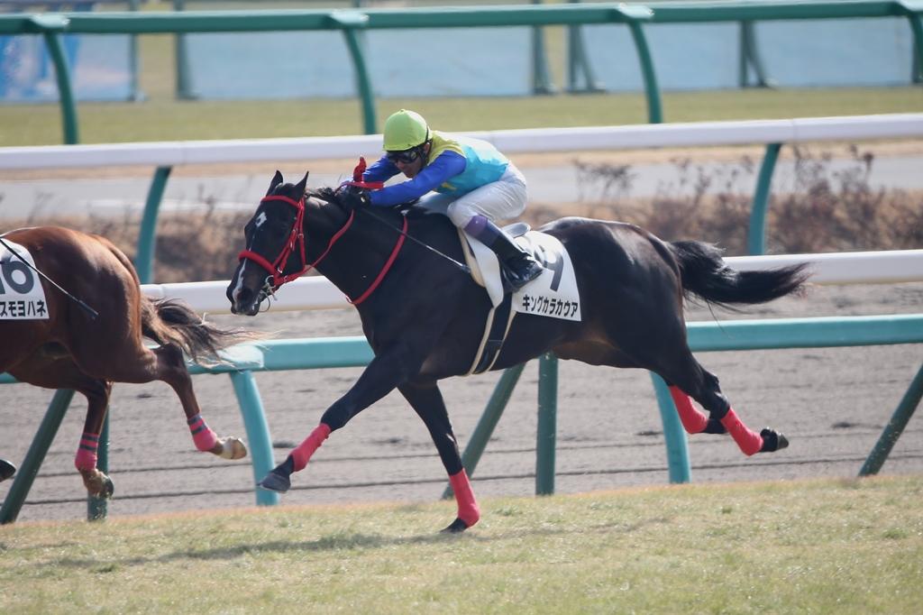 2014年12月28日 有馬記念(GⅠ)_f0204898_89858.jpg