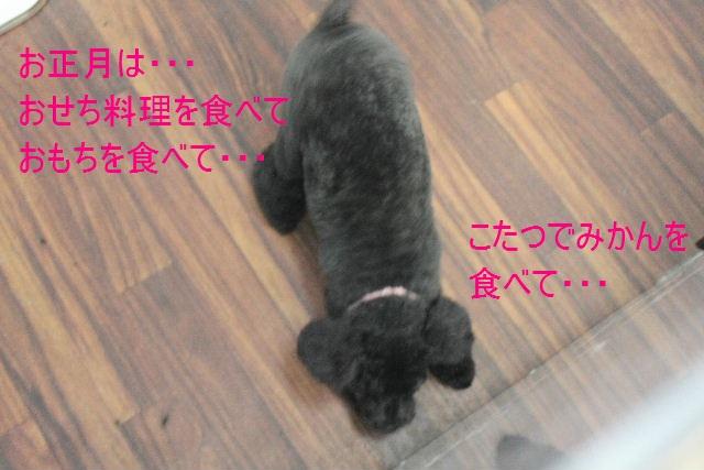b0130018_22364020.jpg