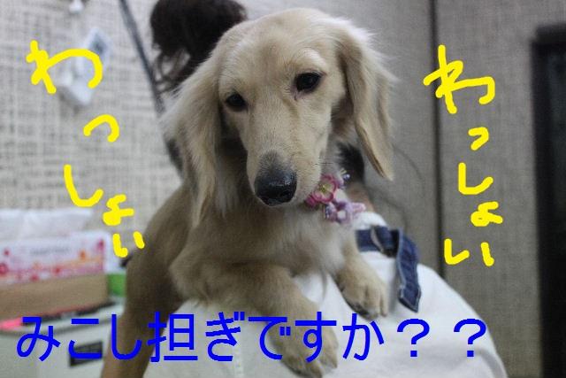 b0130018_22401030.jpg