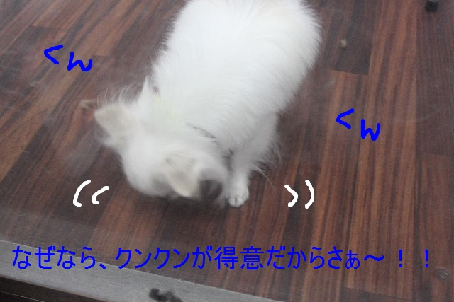 b0130018_2251814.jpg