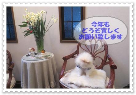 b0167519_15303618.jpg