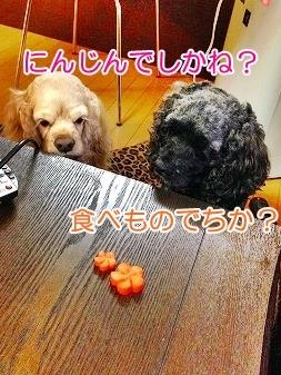 f0326925_16092619.jpg