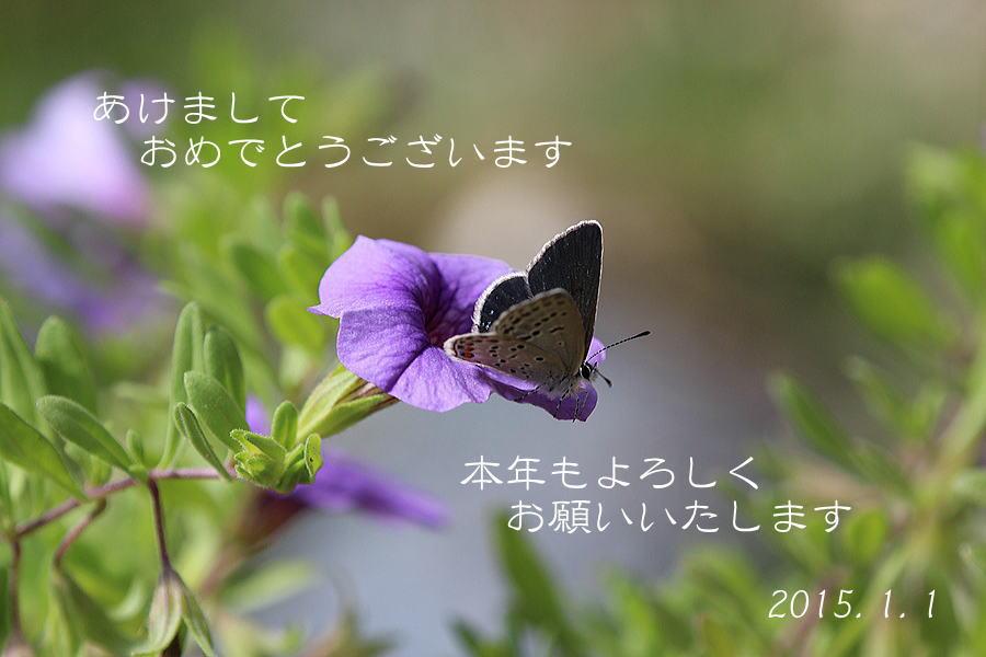 b0189231_16561851.jpg
