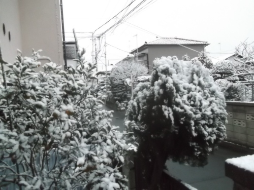 初雪で...モノトーンのお正月_b0137932_16575736.jpg