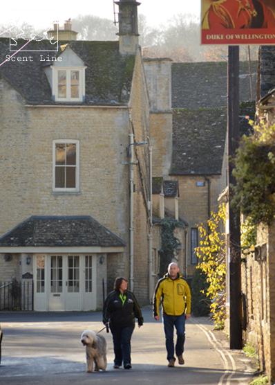 12月のイギリス旅 その2 (朝のお散歩と郊外観光)_c0099133_15581866.jpg