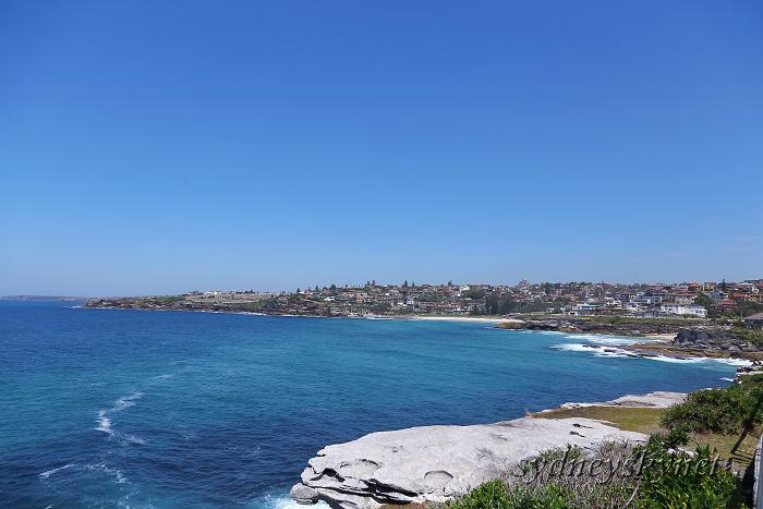 真夏のシドニーから、あけまして!_f0084337_09110050.jpg