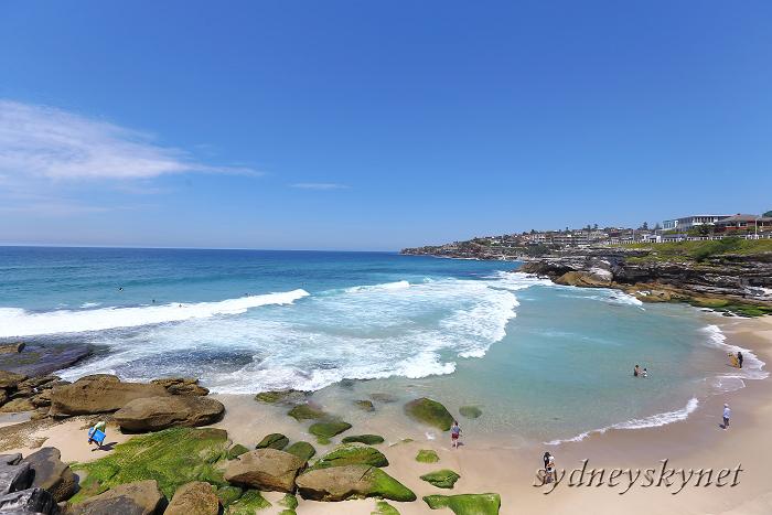 真夏のシドニーから、あけまして!_f0084337_09112319.jpg