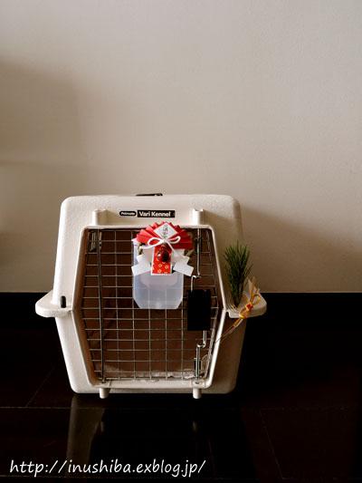 【番外編】ペットだってお正月。無機質なペットの家に正月飾りをつけるとなんだかかわいい。