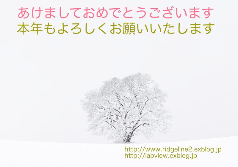 e0220071_831778.jpg