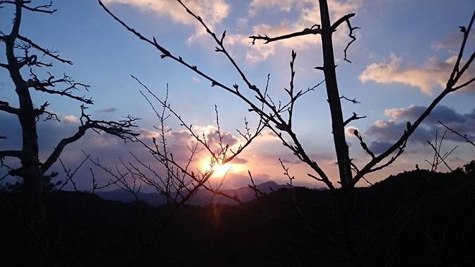 初日の出と青竹箸_d0230676_18265968.jpg