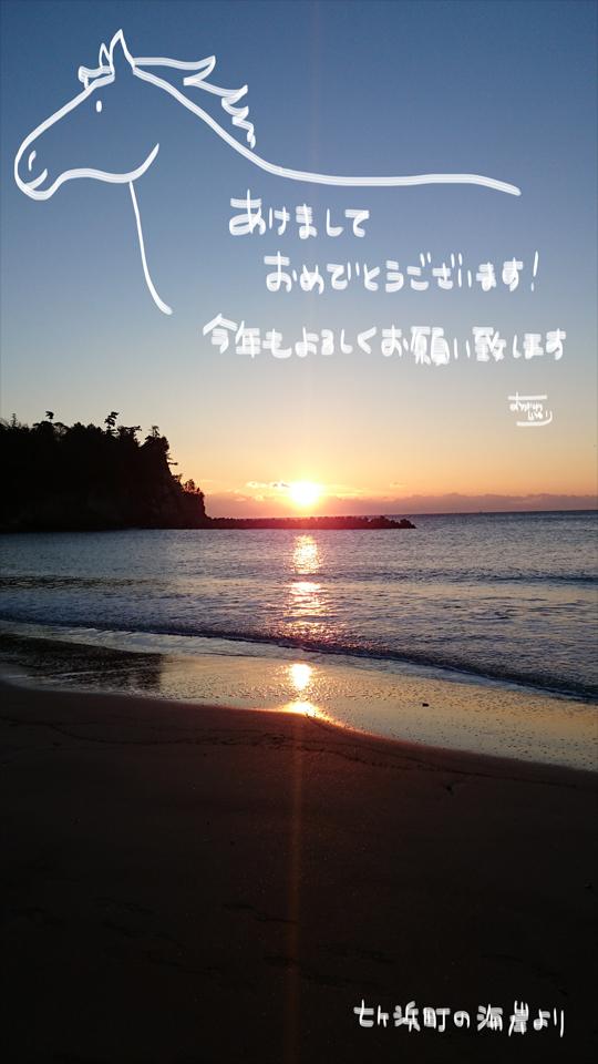 新年のご挨拶_a0093189_10214620.jpg