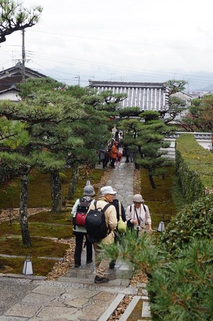 圓光寺・神社仏閣を訪ねる旅、圓光寺京都のお寺を訪ねる紅葉の美しさ_d0181492_15503170.jpg