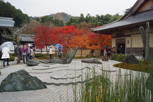 圓光寺・神社仏閣を訪ねる旅、圓光寺京都のお寺を訪ねる紅葉の美しさ_d0181492_15505526.jpg