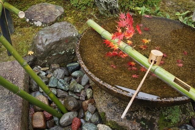 圓光寺・神社仏閣を訪ねる旅、圓光寺京都のお寺を訪ねる紅葉の美しさ_d0181492_15511814.jpg