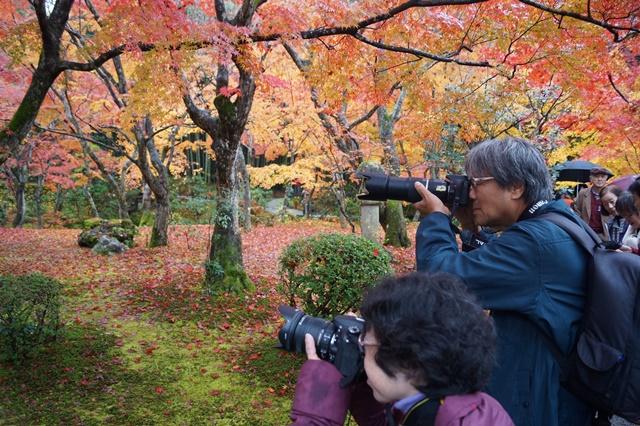 圓光寺・神社仏閣を訪ねる旅、圓光寺京都のお寺を訪ねる紅葉の美しさ_d0181492_15553165.jpg
